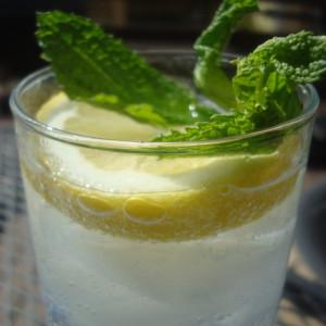 gin tonic munt