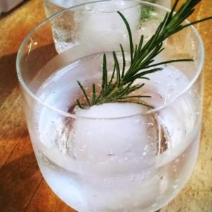 gin tonic rozemarijn